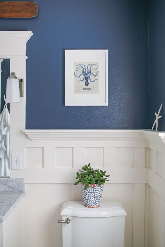 Sherwin Williams Indigo SW6531
