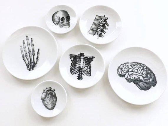 Small plates anatomy art altered